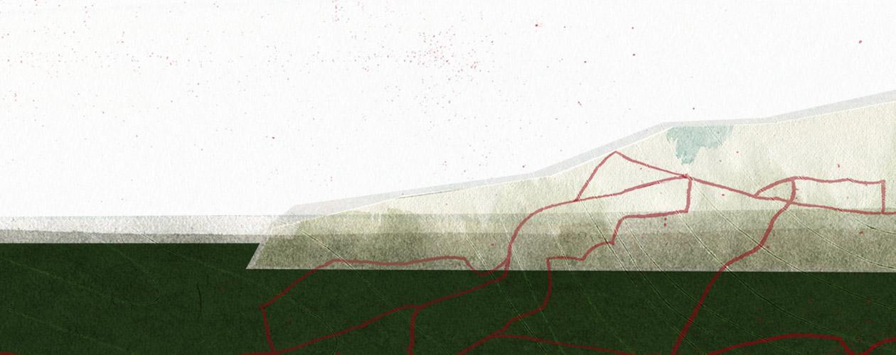 Illustration: Sara Contini-Frank